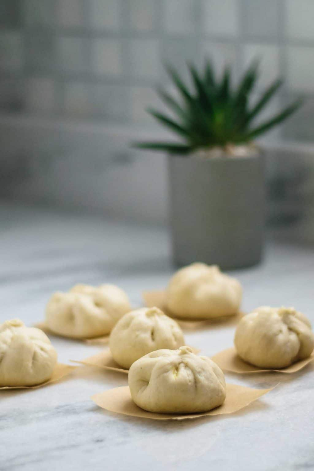 buns shaped and ready to steam
