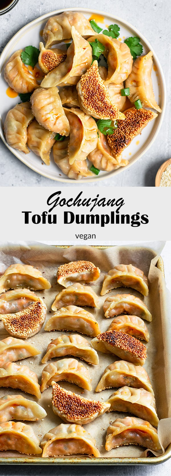 These delicious gochujang tofu dumplings have a spicy Korean-inspired filling and make a great snack, appetizer, or meal! Their crispy sesame seed coated bottom makes them extra special! #thecuriouschickpea #vegan #vegetarian #Korean #dumpling #potsticker