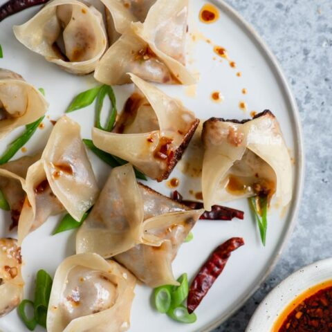pan fried and steamed wontons